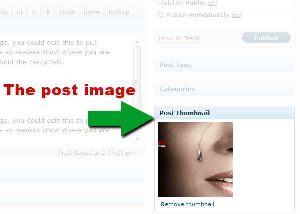Screenshot of WordPress 2.9's post image uploader