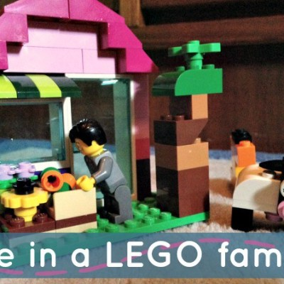 Life in a LEGO family