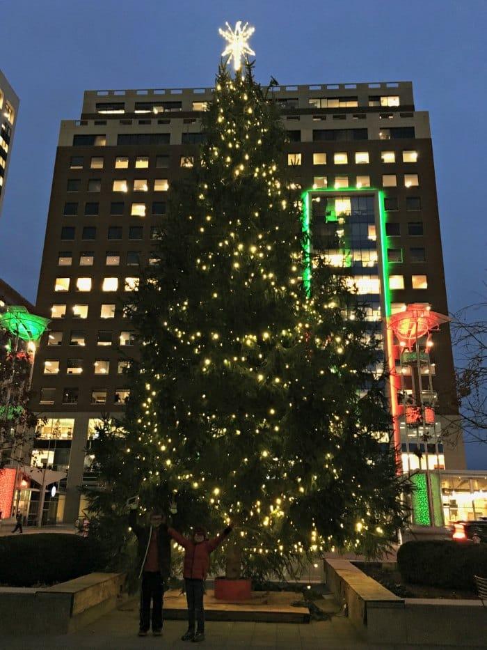 Raleigh City Plaza Tree at Christmas