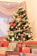 christmas15j (1 of 1)