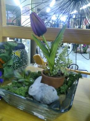 Terra cotta pot in glass dish
