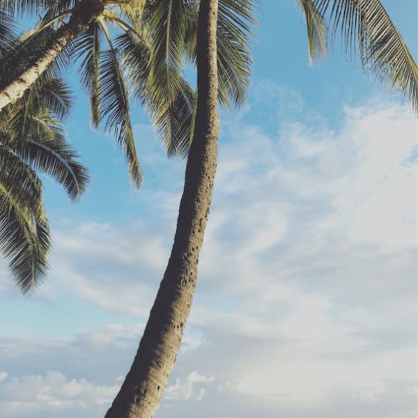 Exploring Oahu, HI