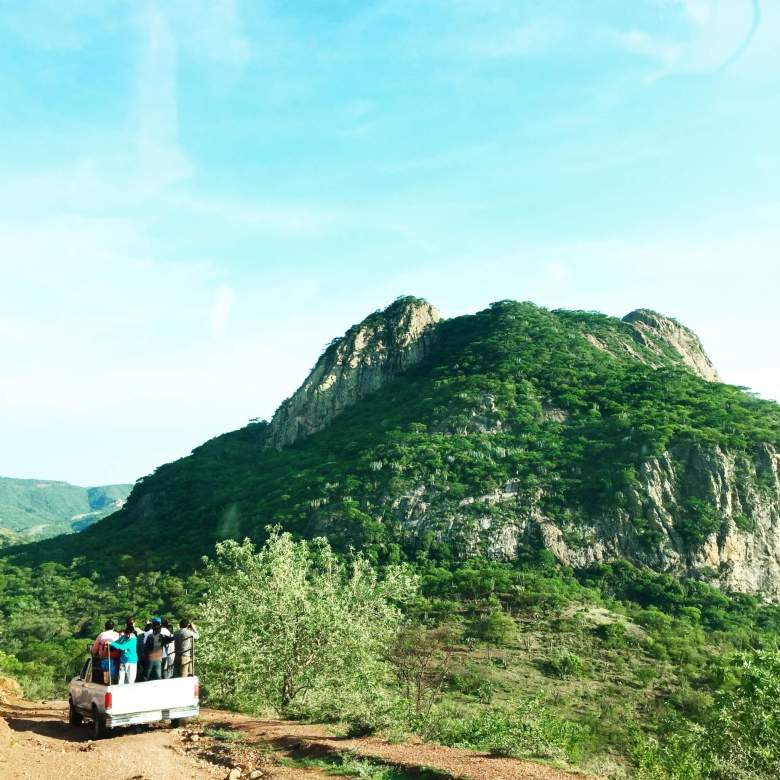 Volunteering in Oaxaca: My Experience Working With Niños Palabra