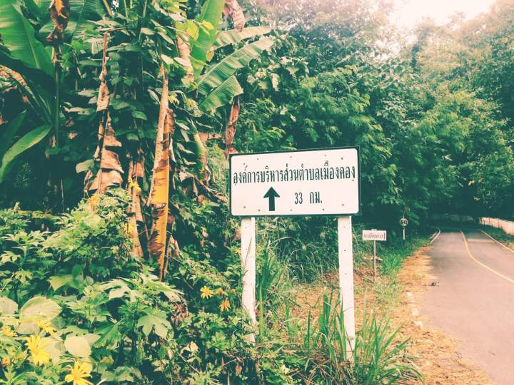 Jungle Roadside Sign in Thailand