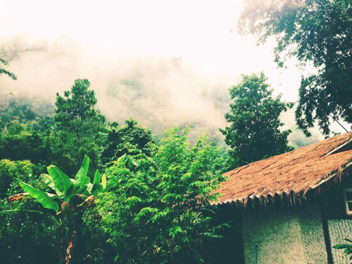 Jungle Mountain Side Thailand