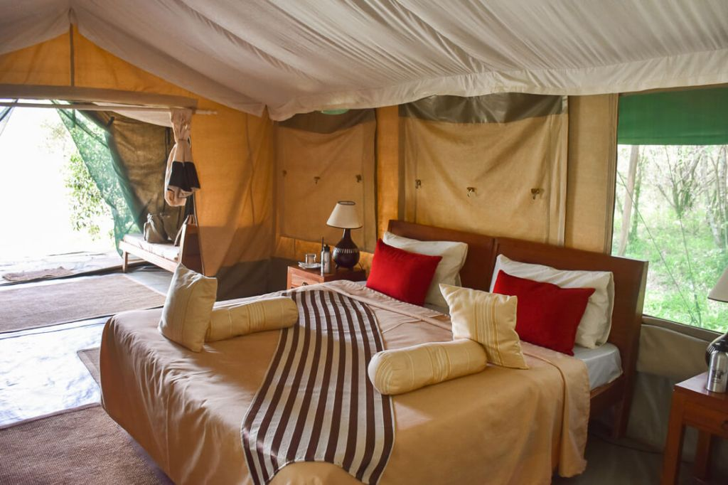 Inspiring Eco Hostels and Hotels
