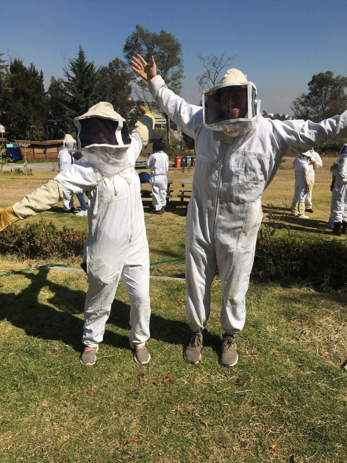 Beekeeping Protective Clothing   Apicultura Mx