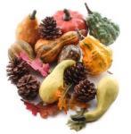 assorted_artificial_autumn_gourds_pumpkins_and_cones_set_medium