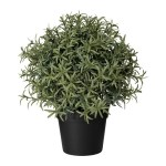 fejka-artificial-potted-plant__0550042_PE658014_S4
