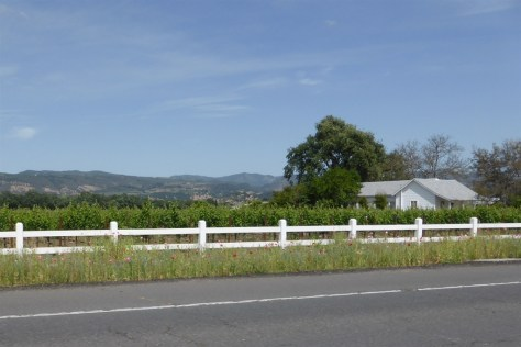 Napa Valley Country