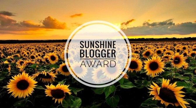 Just Me And A Boarding Pass Sunshine Blogger Award
