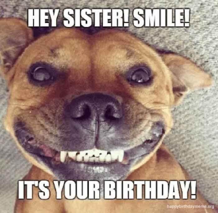 50 Funniest Happy Birthday Sister Meme Birthday Meme