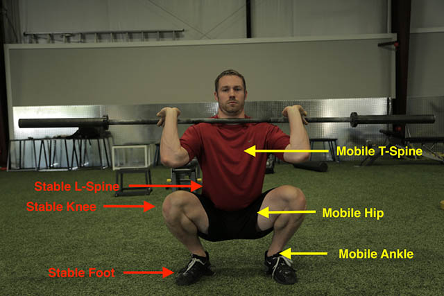 image of a man doing a squat with weights courtesy of