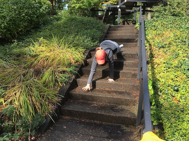 Image of woman doing bear crawl exercise down steps
