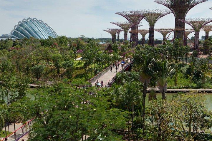 gardens-by-the-bay-singapore_762786745.jpg
