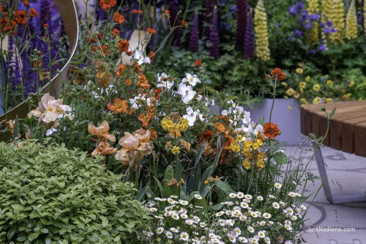 Chelsea Flower Show – Detailed look at 3 gardens from the show