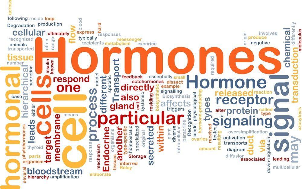 Get Your Hormones on Track