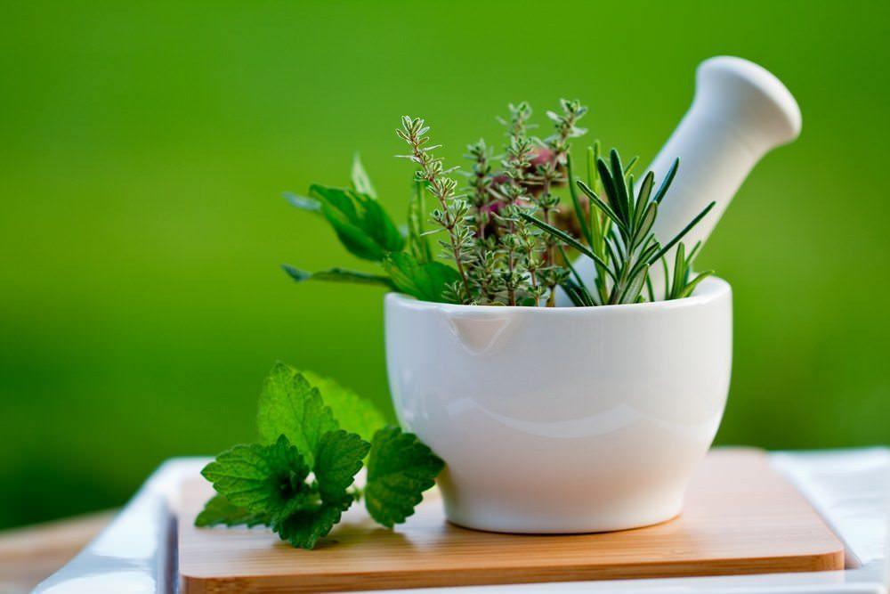 9 Healing Herbs
