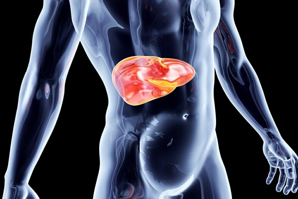 Improve Liver Health With Milk Thistle