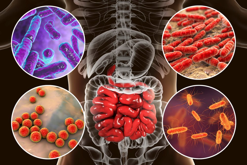 cleaning toxins from our system