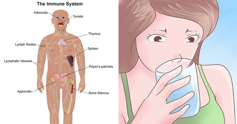 Boost Your Immune System And Prevent Colds With These Naturopathic Tricks