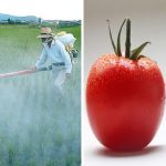 5 Terrifying Things Being Done To Your Food That You Need To Know About