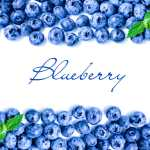 Organic Blueberries can Slow Aging and More…