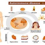 Are You at Risk for Autoimmune Disease?