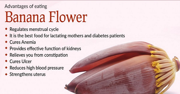 The Benefits Of The Banana Flower