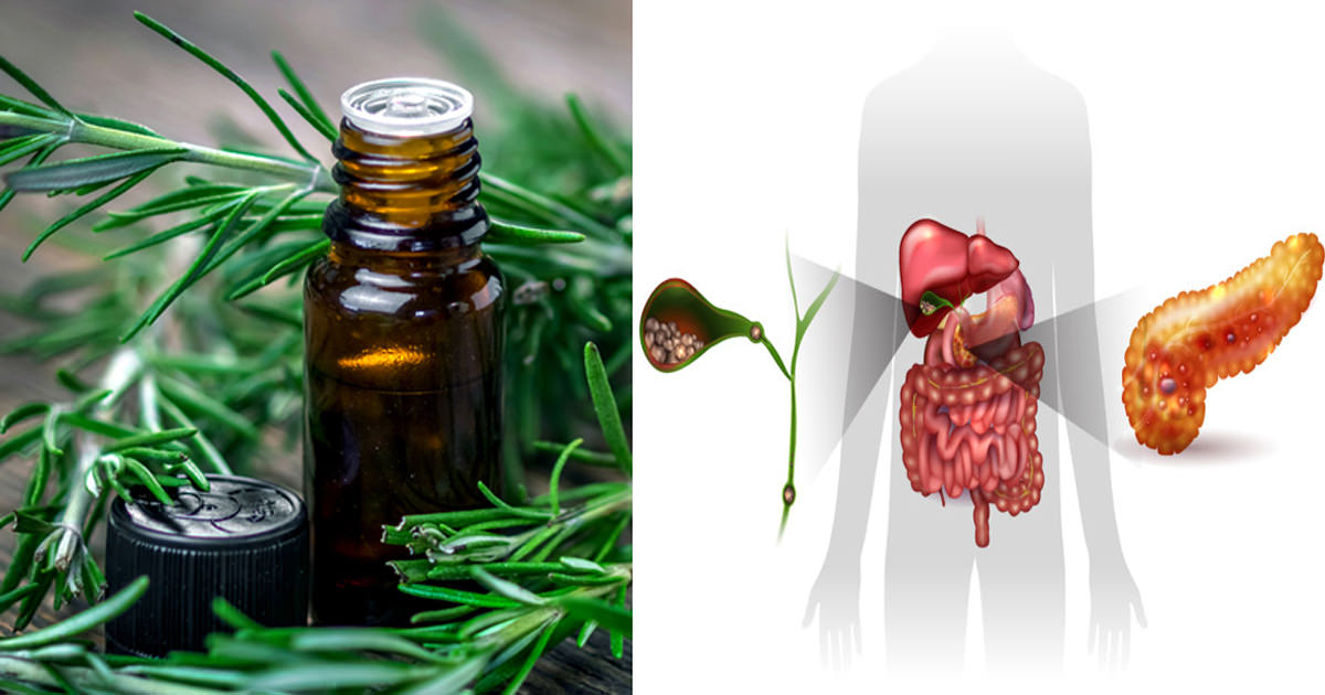 The Best Essential Oil That Boosts Memory, Detoxifies Your Liver & Relieves Stress