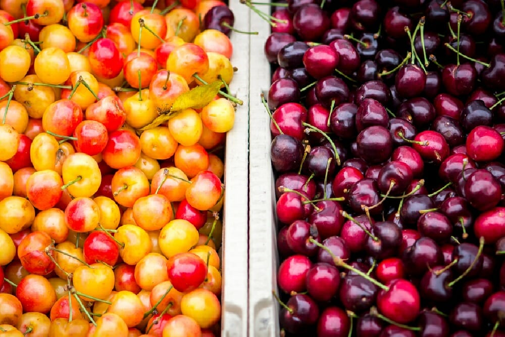Cherries are an amazing superfood.