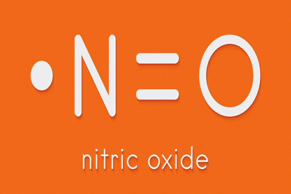 How does nitric oxide impact health?