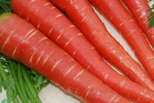 Fresh Red Carrot ( Gajar ), 500g