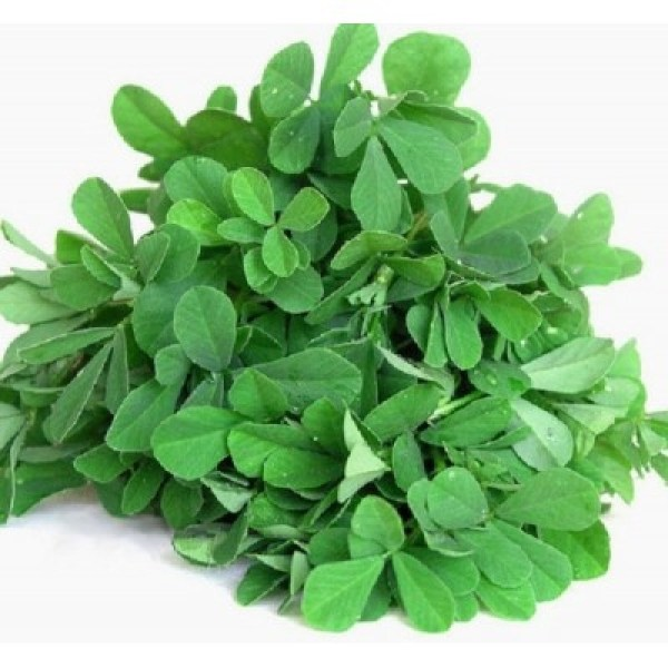 Methi / fenugreek, 500g