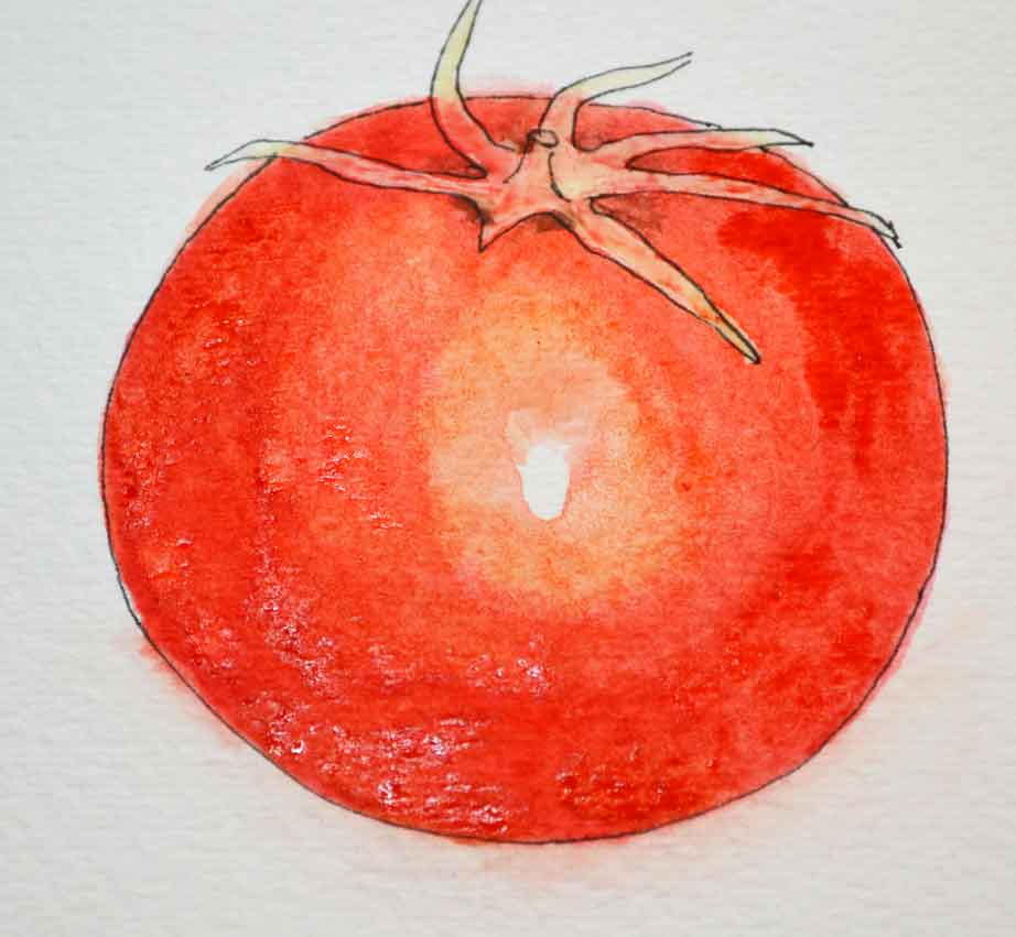 how-to-paint-tomato