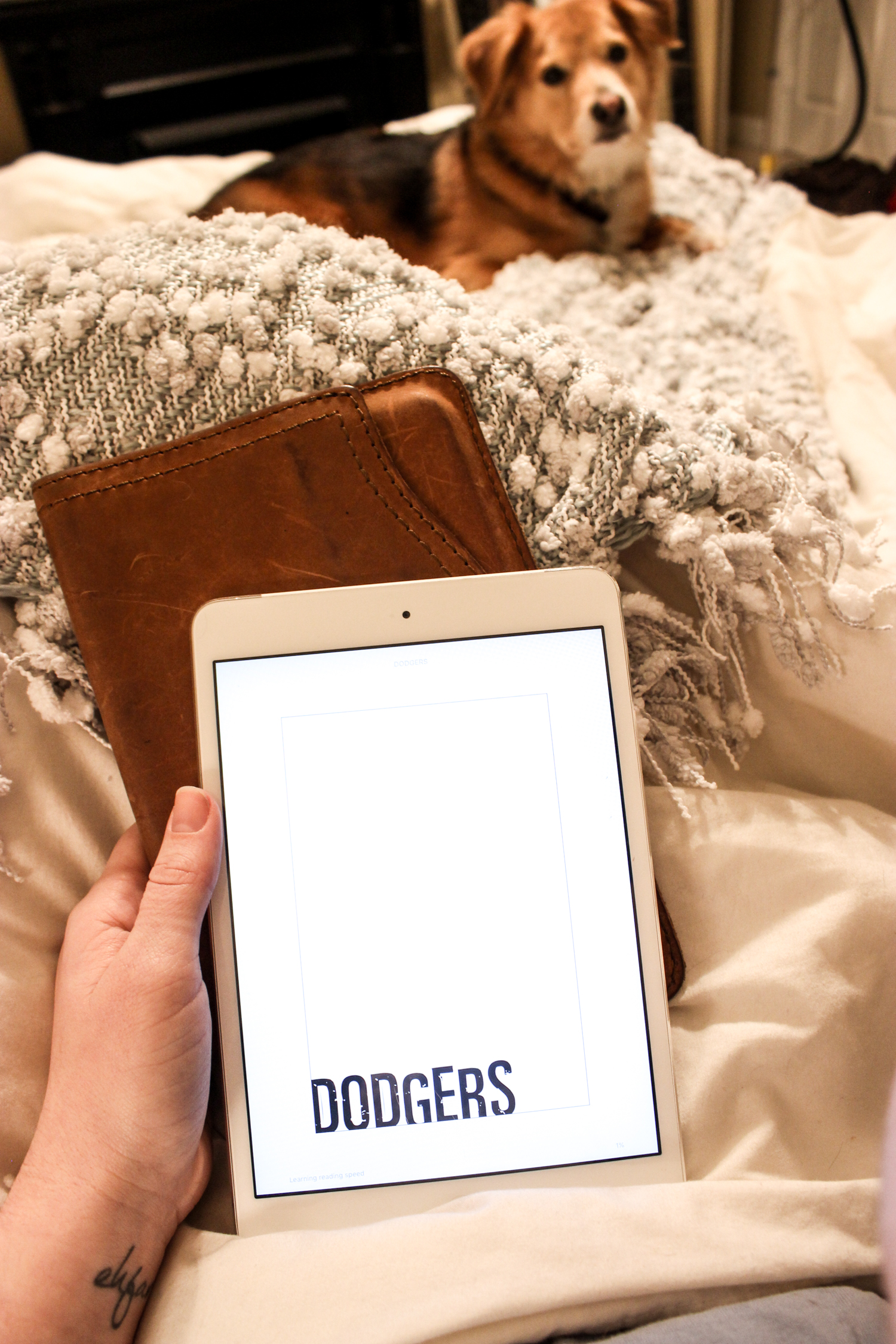 Dodgers by Bill Beverly Book Review | Just Peachy Blog