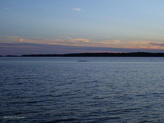 a summer evening in Stockholm archipelago