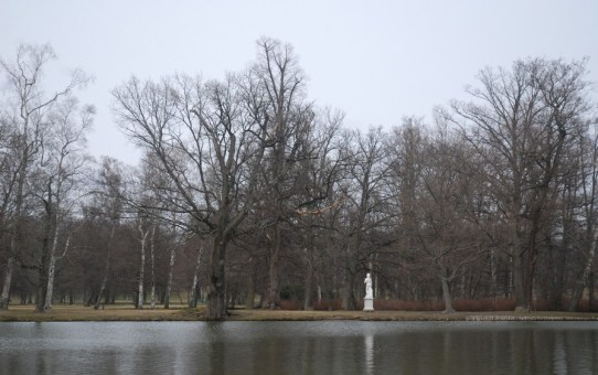 the statue in the swedish royal court park