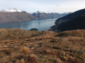 Looking out across Fernhill and Lake Wakatipu