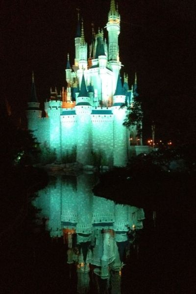 Our Disney Trip: The Mosaic of Memories
