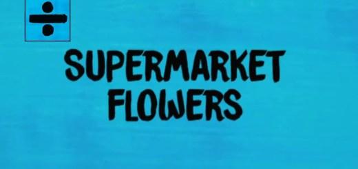 ed sheeran supermarket flowers lyrics review song meaning