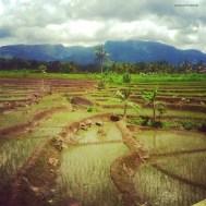 In treno da Yogyakarta a Jakarta