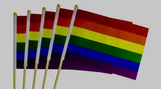 Bulk of Gay Pride Flags 50 Count