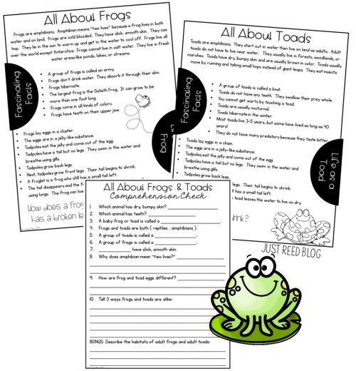 Introduce frogs and toads with these nonfiction passages and comprehension check
