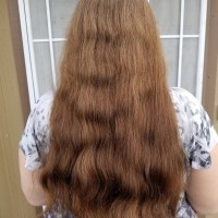 14″ of Virgin Warm Chestnut Brown Hair