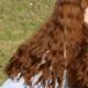 Natural Red or Auburn Thick Wavy Virgin Hair 1500