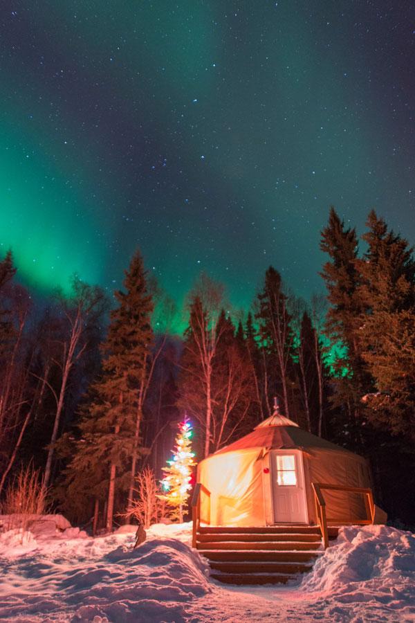 Yurt Stay Bed and Breakfast Fairbanks Alaska