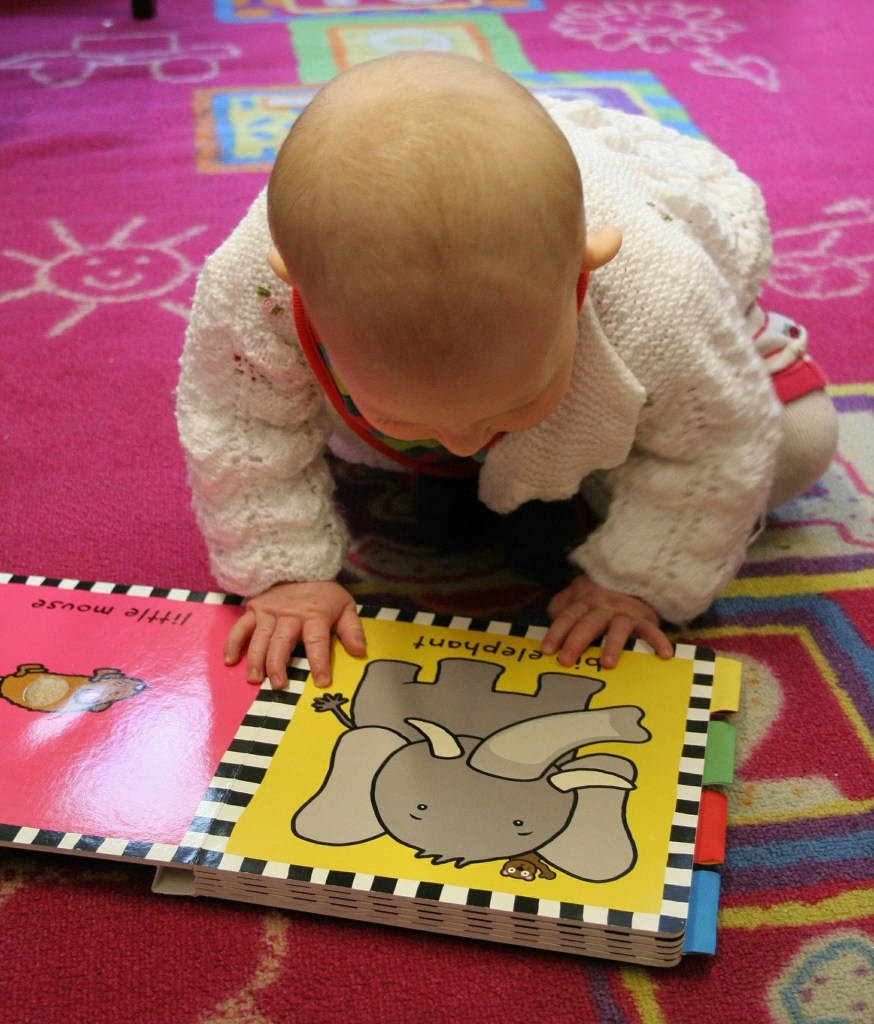 Learn about the benefits of reading to toddlers and babies from developing literacy skills, comprehension, focus, & creativity. This post includes board book recommended reading lists in each category that are best to read to read to your children at a young age.