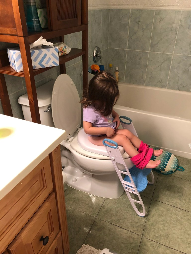 Need help learning how to potty train your 2 year old? Find tips here to potty train your toddler the easiest way possible by following a consistent routine, letting them stay naked around the house, and offer rewards as necessary. The process can start early on by introducing the potty and making sure they have a full understanding before you begin.