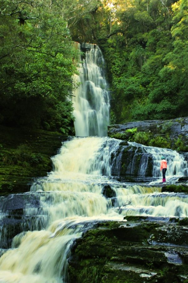 Discover the most beautiful waterfall in New Zealand   9 reasons why the Catlins needs to be on your New Zealand itinerary #newzealand #thecatlins #simplywander #mcleanfalls